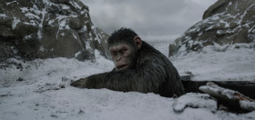 Andy Serkis - ' War For The Planet Of The Apes'